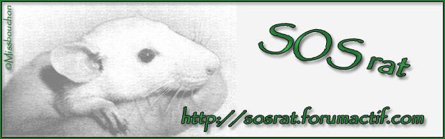 SOS rat