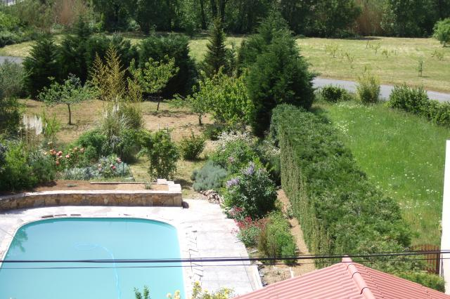 Mon jardin et moi... - Page 2 651349Nouvelles_photos_053