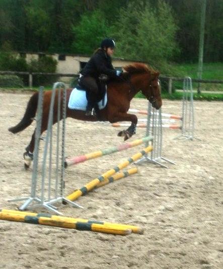 Une photo de vous et votre cheval 7233192409882255_4