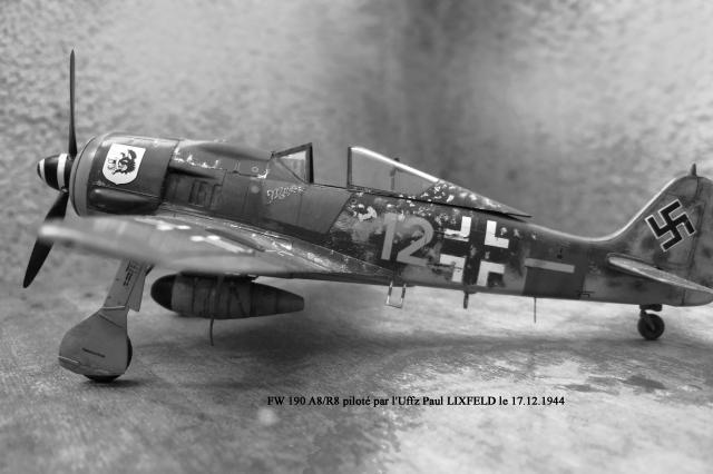 Stuka Heller ex Airfix  1/48 818165FW190_A8.R8__2_