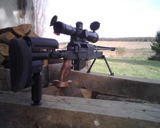 photos de vos armes TLD - Page 2 819966pgm338__poigne_bois2