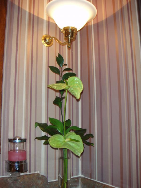 [DLP] Noël au Castle Club du Disneyland Hotel du 23 au 25 décembre 2009 (NEW: 2ème partie du Chapitre 2) - Page 3 838023DSC00098