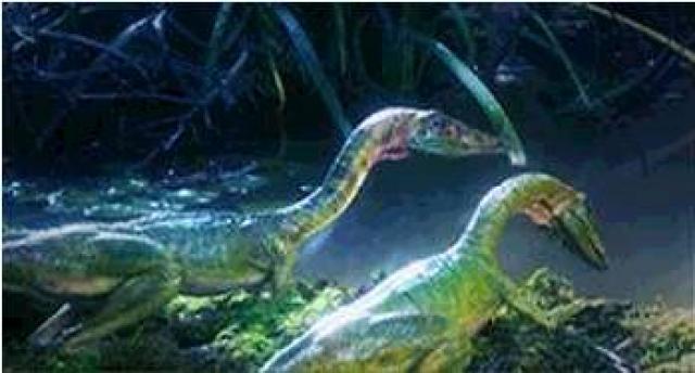 Compsognathus 845670compsognathus