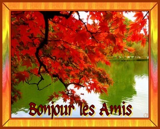 Vendredi 28 Octobre 902450Bonjour_les_amis_automne_ovfoyjy7