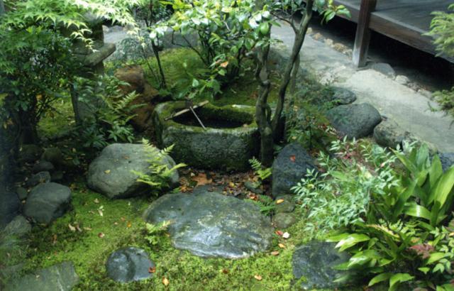 Chii - Page 3 91683806_SanTsukubai