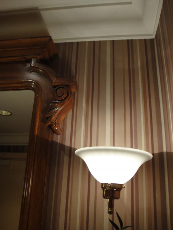 [DLP] Noël au Castle Club du Disneyland Hotel du 23 au 25 décembre 2009 (NEW: 2ème partie du Chapitre 2) - Page 3 994041DSC00102