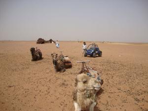 Petites ballades au Maroc Mini_454946331679DSC00258