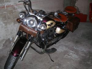 800 VN - la moto d'ANDRE alain Mini_946730P1012654