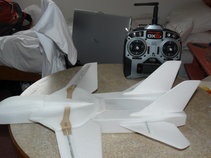 Un F-14 Tomcat ?! 294276P1040077__800x600_