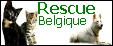 Les boutons de Rescue Belgique 420316Bouton