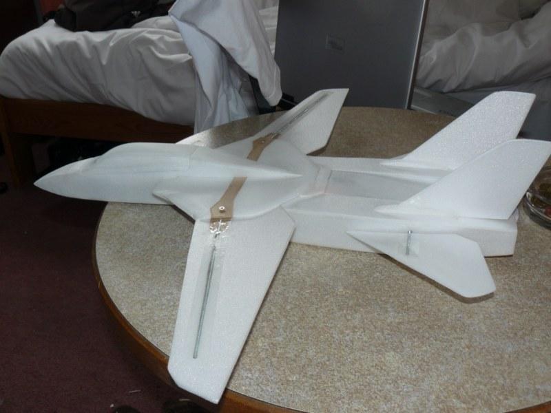 Un F-14 Tomcat ?! 452025P1040075__800x600_