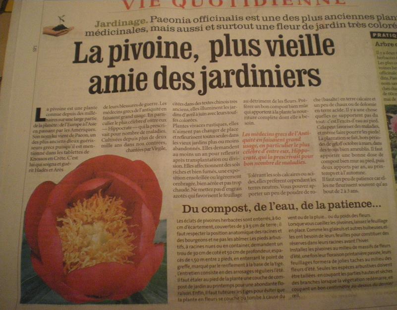 LA VEGETATION MEDITERRANEENNE - Page 2 477593IMGP9485