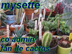 forum jardinier passioner - Portail 642536Sans_titre