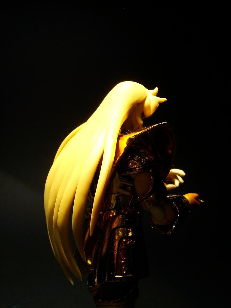 Vos photos de la Myth Cloth de la Vierge O.C.E. (modifiée) 729908DSCF1382