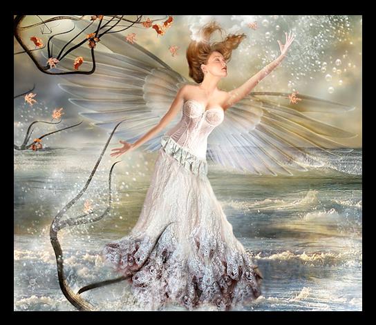 Les fées en général - Page 5 863103__StarBu22rst__589_
