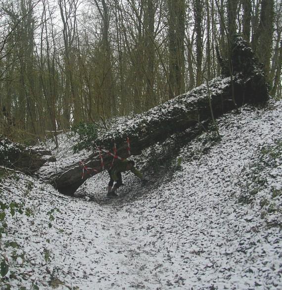 Trail des poilus 2010 952393995462trail_des_poilus_reco_janvier_2010