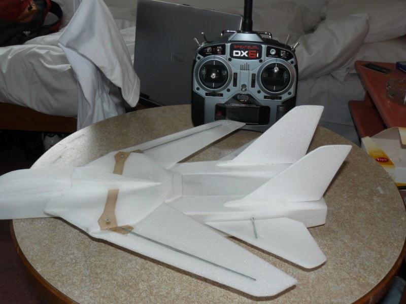 Un F-14 Tomcat ?! 984611P1040079__800x600_