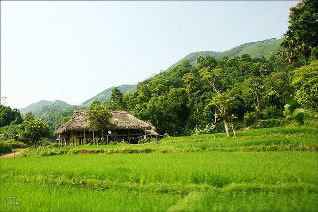 Làng quê Việt Nam đẹp giản dị suốt 4 mùa 70225388