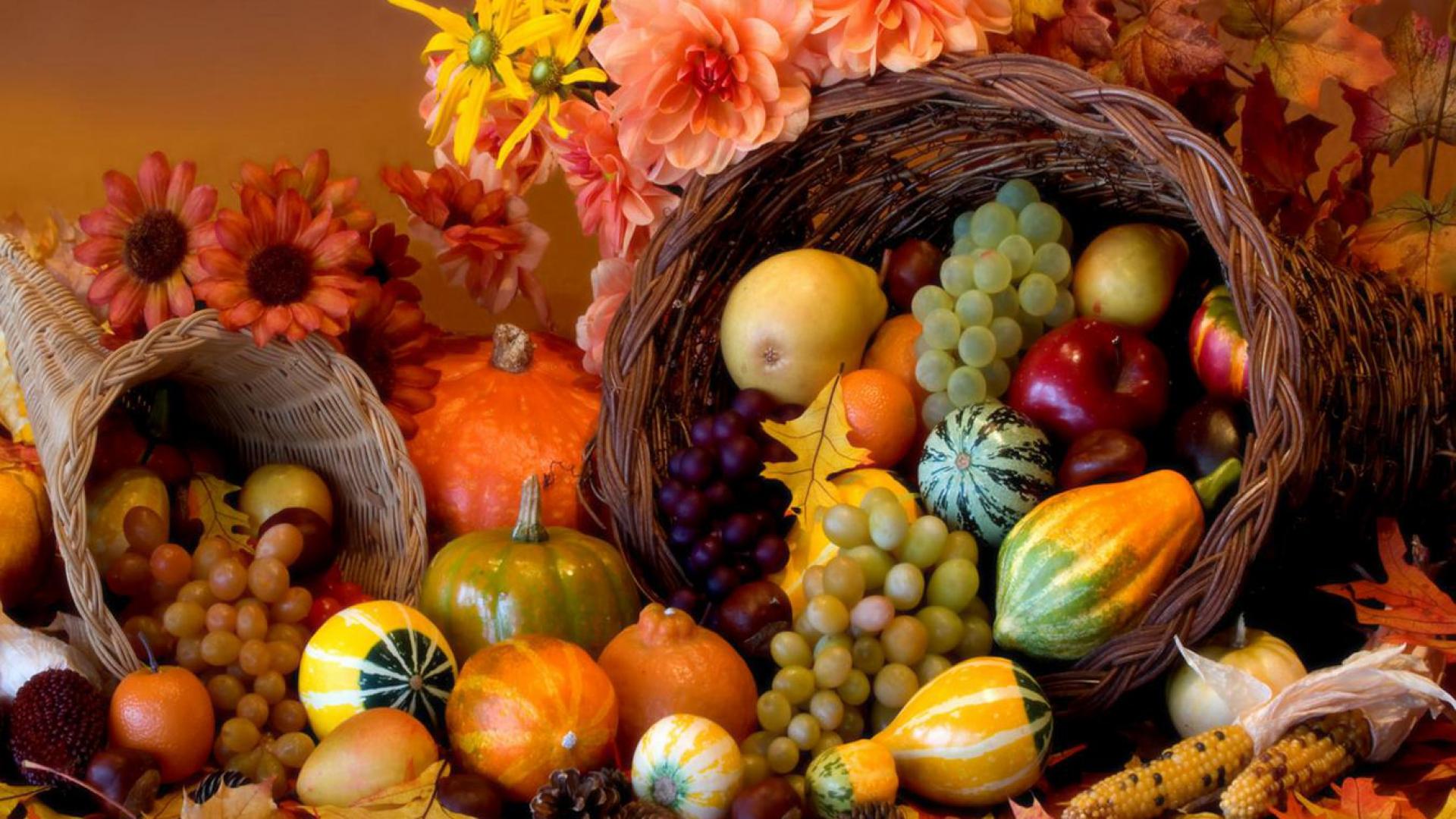 Hình nền Thanksgiving 46157797