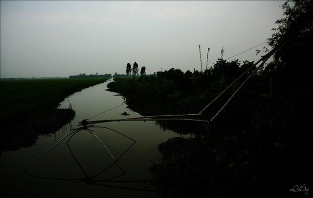 Làng quê Việt Nam đẹp giản dị suốt 4 mùa 43737778