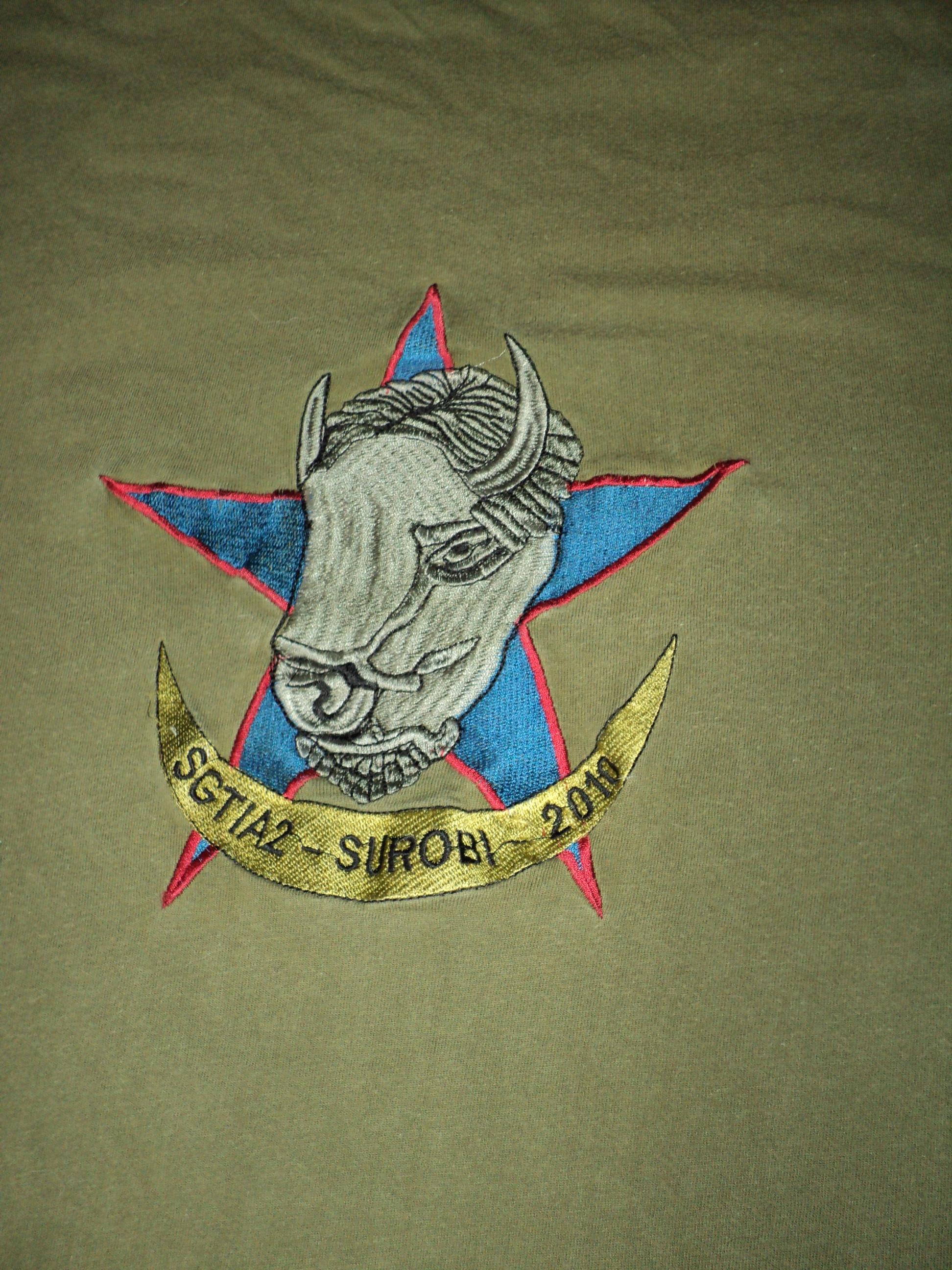 T-shirt du 126 RI Dsc00781vx