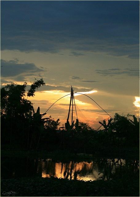 Làng quê Việt Nam đẹp giản dị suốt 4 mùa 15874726