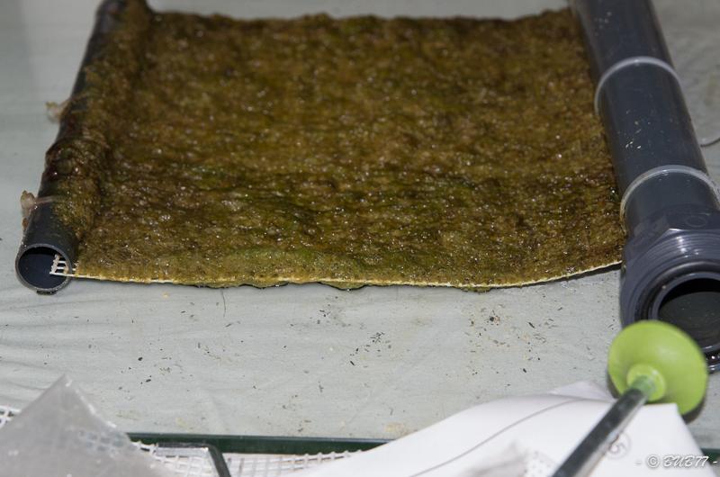 DIY - Fabrication d'un ATS Algae Turf Scrubber Ufll