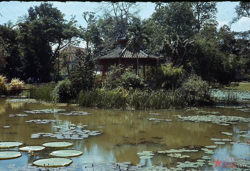 Sài Gòn 1970-1971 đẹp cổ kính 86822149