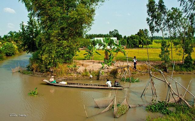 Làng quê Việt Nam đẹp giản dị suốt 4 mùa 16903729