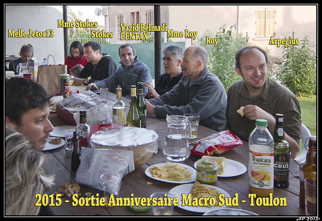 Sortie Anniversaire Toulon - Photos des 5èmes Rencontres Macro du Sud (2015) Poii2V