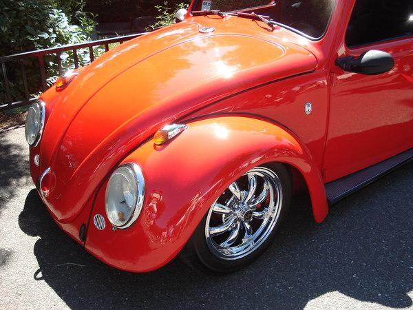 Beetles_del_mundo__encuentros_de_otros_paises G3BYUj
