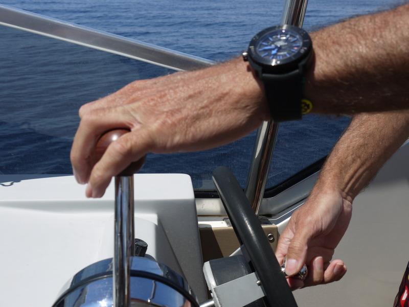 """Dauphins, baleines en Méditéranée et Aquascope """"Black & White"""" JxOApu"""