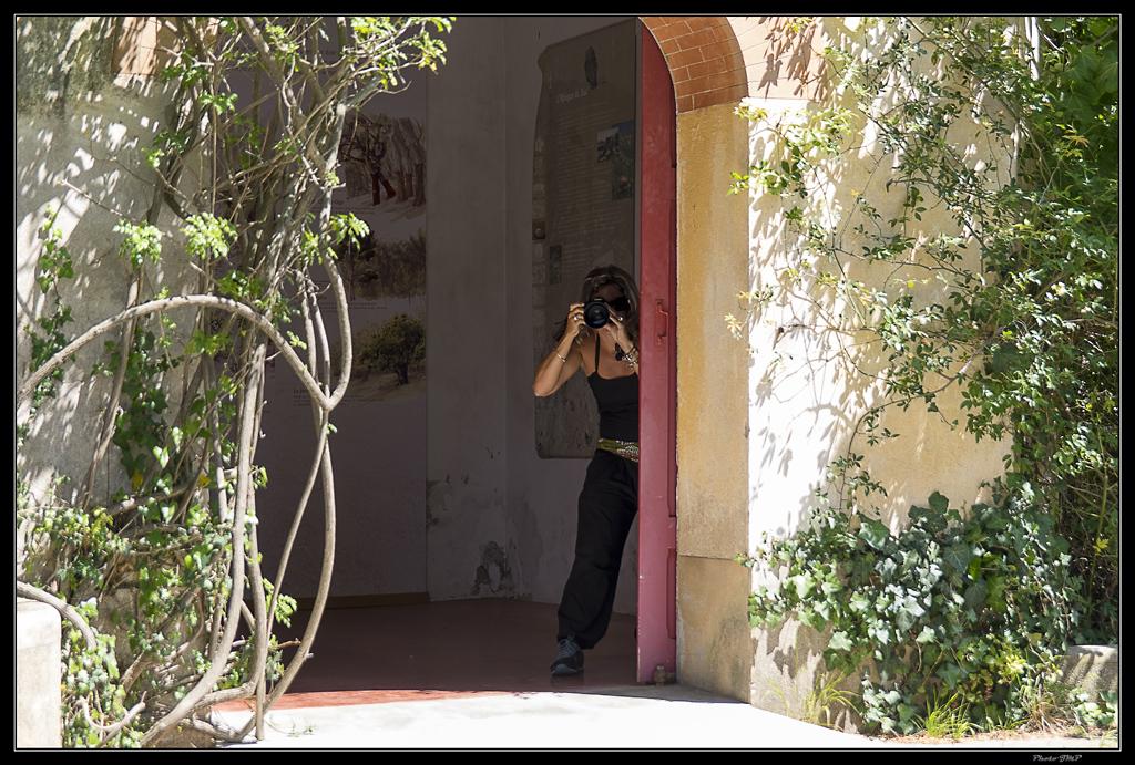 Sortie Anniversaire Toulon - Photos des 5èmes Rencontres Macro du Sud (2015) - Page 21 UwTKTc