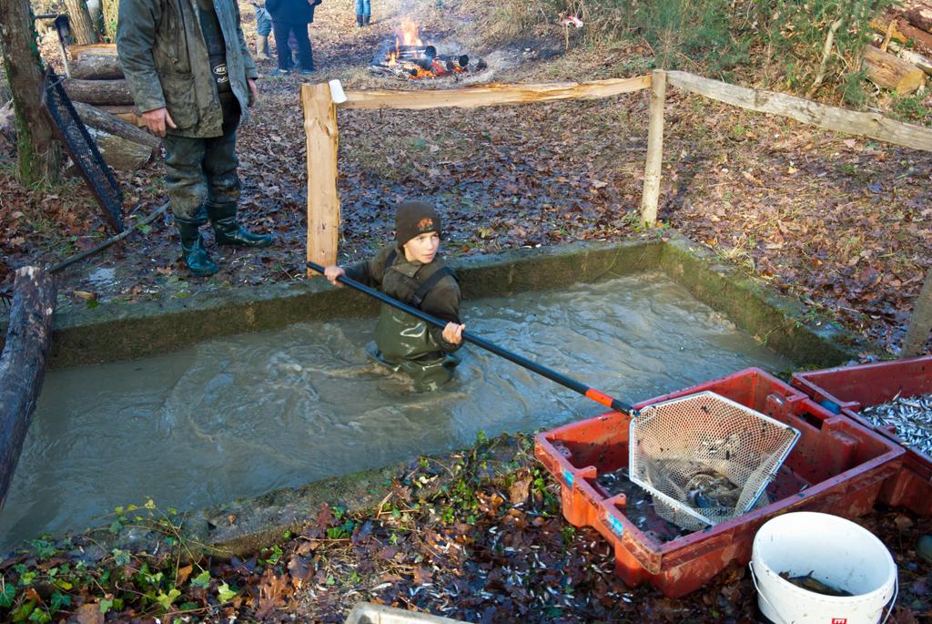 Une pêche d'étang en Sologne Av0deR