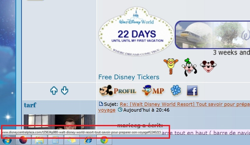 [Walt Disney World Resort] Tout savoir pour préparer son voyage 2f3c36