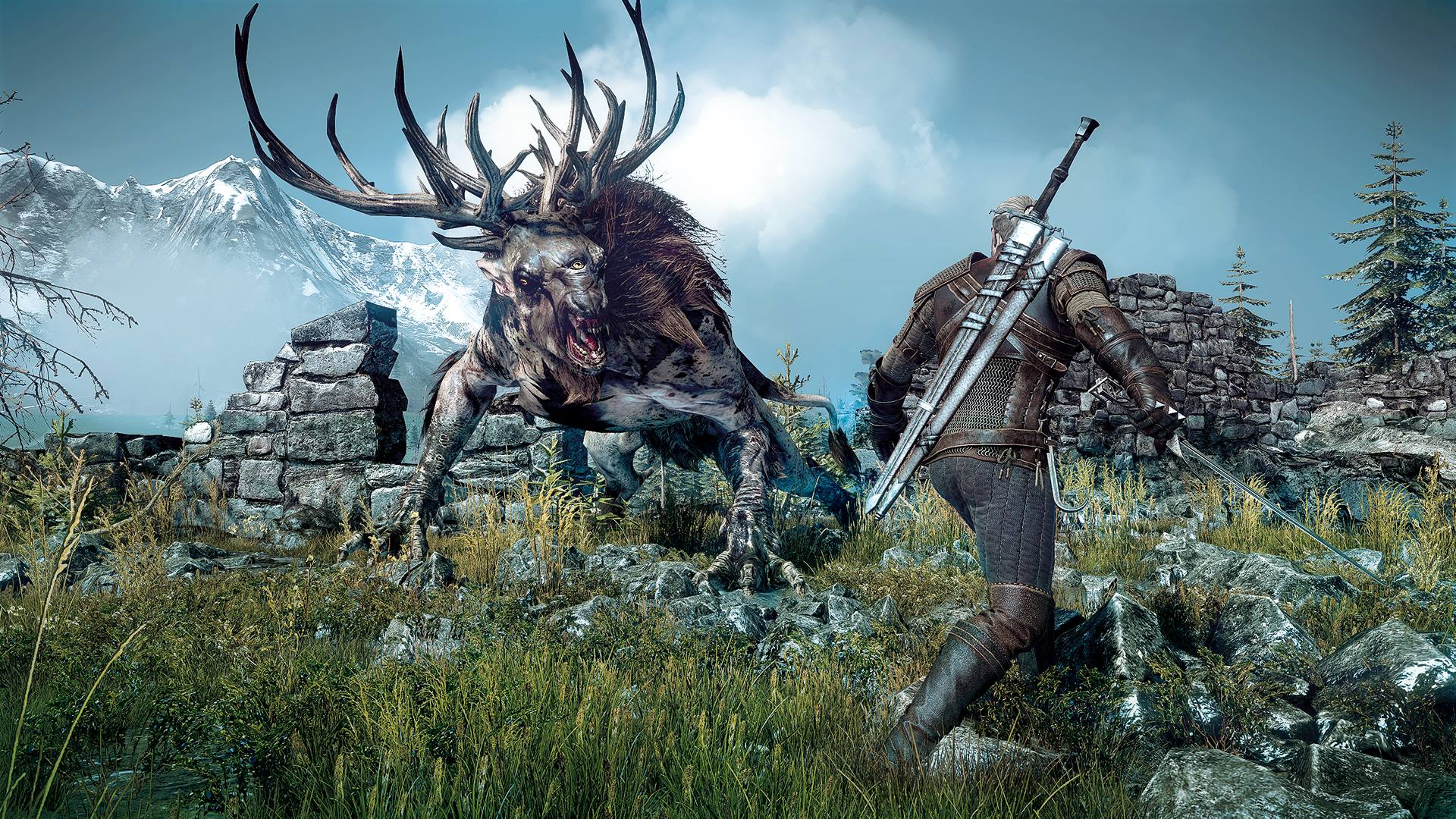 The Witcher 3: Wild Hunt Dmi6