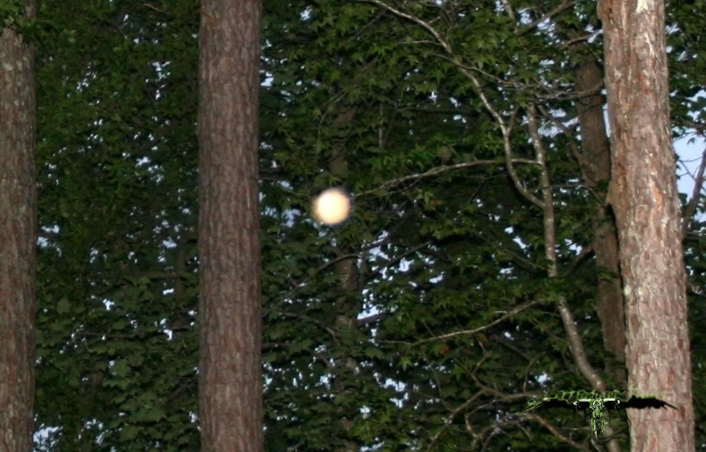 2014: le 18/04 à 15h00 - Un phénomène ovni surprenant - Marquenterre - Somme (dép.80) - Page 2 6brbo