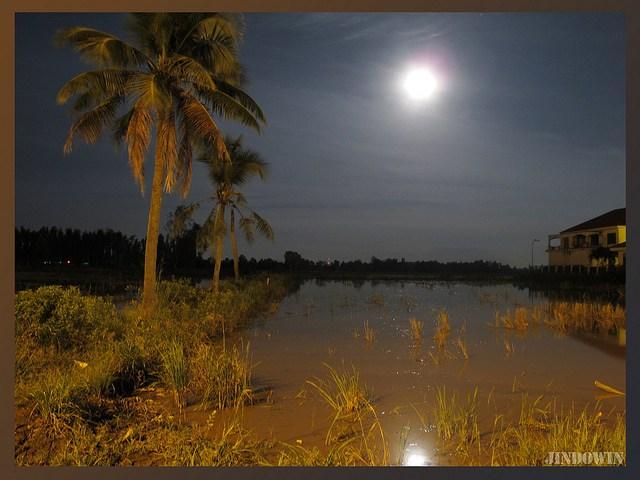 Làng quê Việt Nam đẹp giản dị suốt 4 mùa 31796350