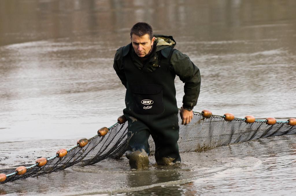Une pêche d'étang en Sologne MlC8Zq