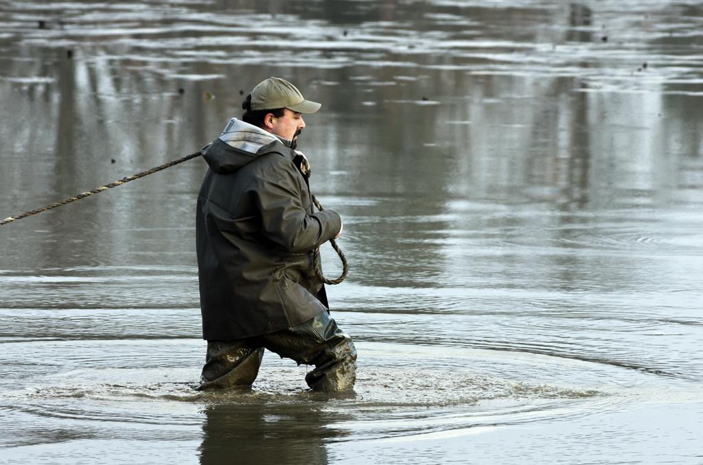 Une pêche d'étang en Sologne N67gmE