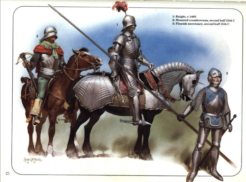 El caballo de guerra medieval. Evolución de su equipamiento y armadura 6aWdqk