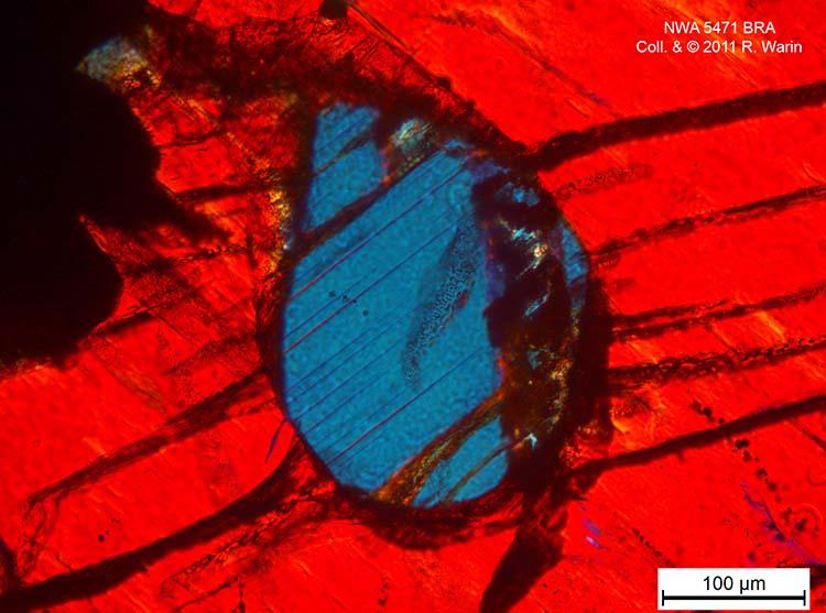 Brachinite NWA 11756 OCsUbU