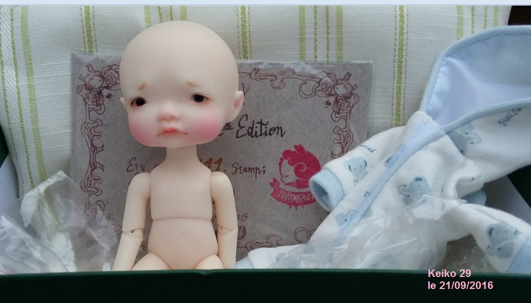 [VDS] News * 3 dragons Aileen doll * P12wf1