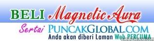 Magnetic Aura 636572e67d06b6m3vh9