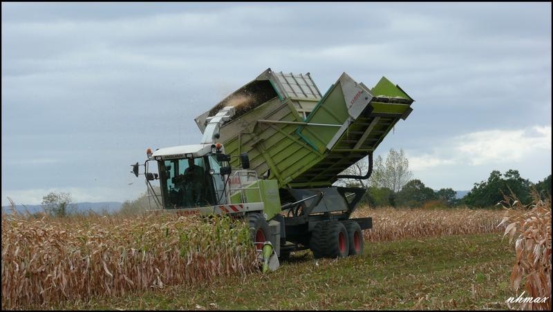 Ensilage de maïs 2011 P1100714w