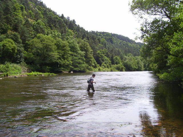 Rencontre sur l'Auvergne photos Page 7! - Page 6 1001756as7
