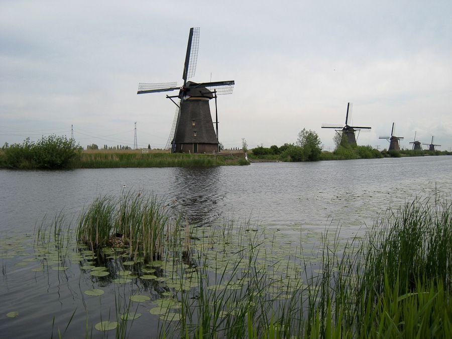 WK à Amsterdam le 15 et 16 Mai : Les photos Img538220100516850is
