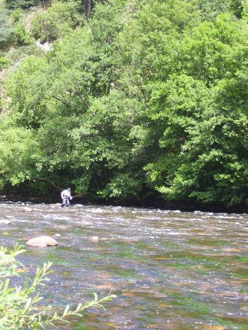 Rencontre sur l'Auvergne photos Page 7! - Page 6 1001760fy6