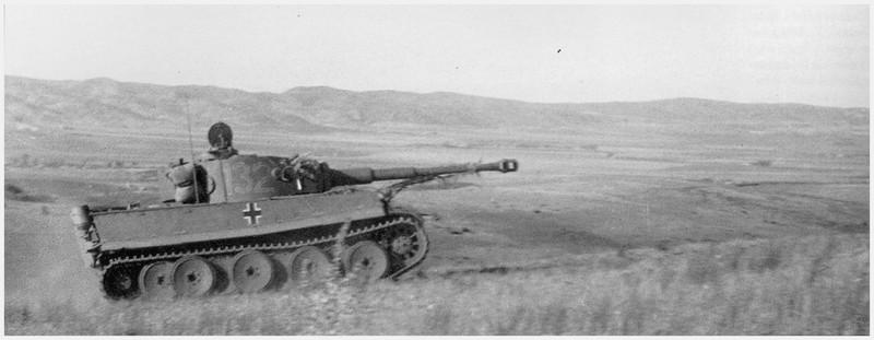 Tiger I du sPzAbt. 501 en Tunisie 1943 Tigerinr132spzabt501nor