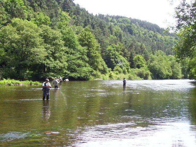 Rencontre sur l'Auvergne photos Page 7! - Page 6 1001774hj9